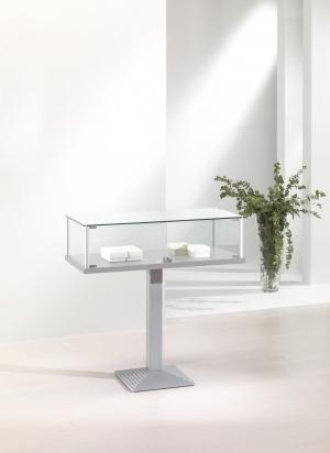 Vetrina in cristallo con piantana